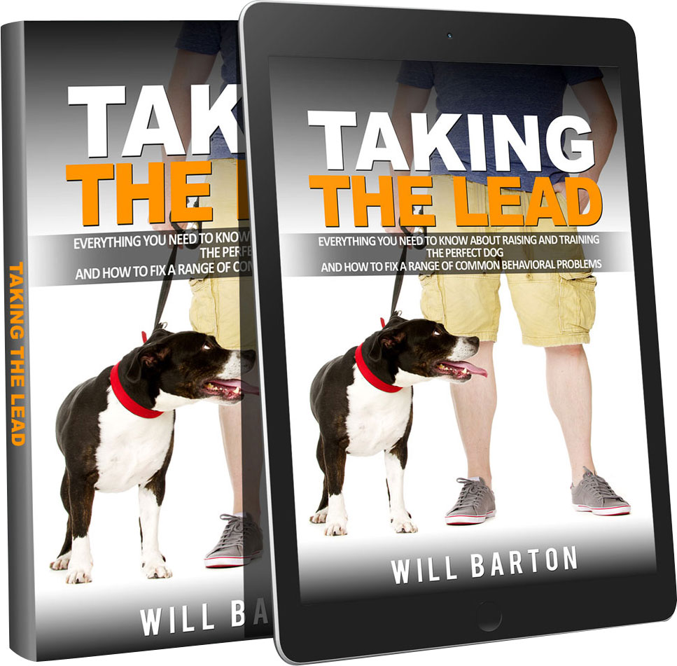 good-taking-the-lead1