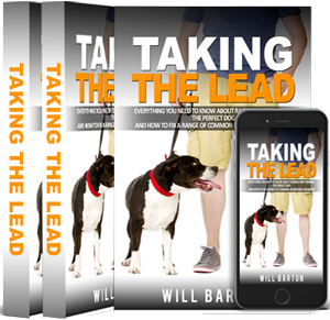 small-taking-the-lead-book-image